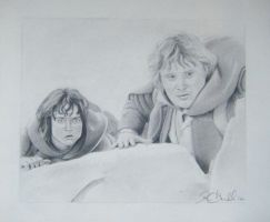 Lord of the Rings Sam and Frodo by KimberlyHullStudio