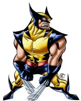 Wolverine Color by ginmau