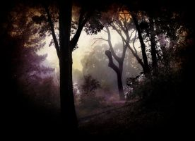 Inside the forest...be wild by DUN09