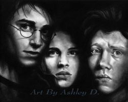 hp poster_ finished by shley77