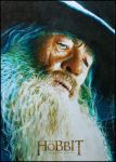 Gandalf the Grey by DavidDeb
