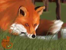 Fox-attempted realistic drawing by danituco
