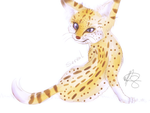 Serval by teresastrawberry