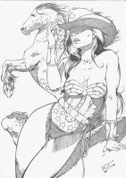 wonder woman in cowgirl by jefterleite