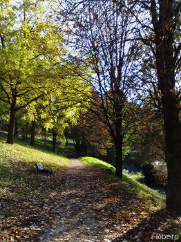 Automne by Fhead