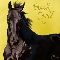 Black Gold by ExquisiteGraceDesign