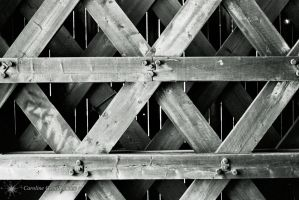 Cross Lines by cwgentilhomme
