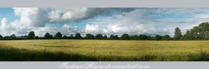 Cornfield Panorama by IndianRain
