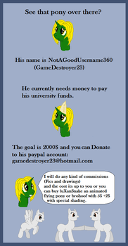University Fundraiser Poster by NotAGoodUsername360