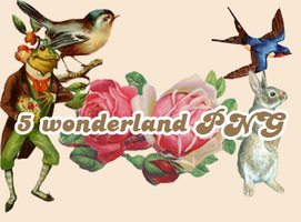 5 wonderland PNG by moment4lifex