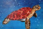 SeaTurtle by Ookami-FAC