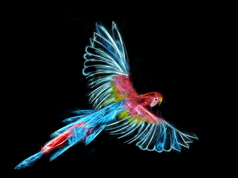 Fractal Parrot by ADesignToRemember