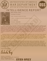 Intel Report Red Skull Aged by viperaviator