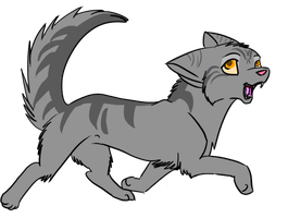 Graypaw by darkflight-wolf