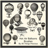 Hot Air Balloon Brushes by AllThingsPrecious