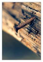 Rusty Nail by ReneAigner