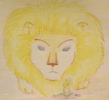 Little Lion Man by Misty-Dragonfly
