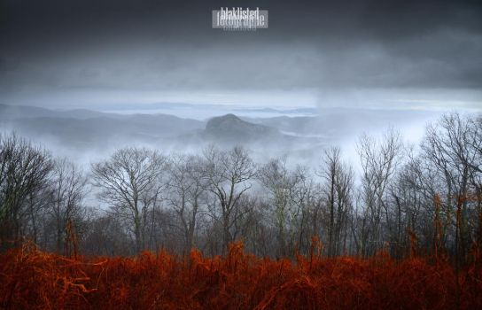 Atmospheric Morning by Blaklisted