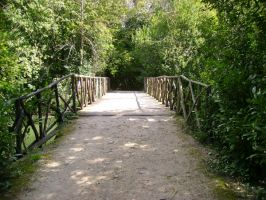 a ponte by sumabell