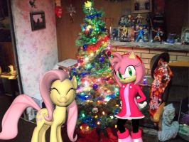 Tree is all Set by Rachidna