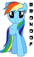 Rainbow Dash Brohoof by Elliums