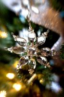 Crystal Ornament by LDFranklin