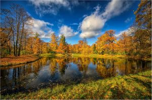 Autumn view... _52_ by my-shots