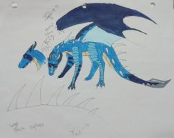 Blue dragon adopt (closed) by XTwilight-SerenityX
