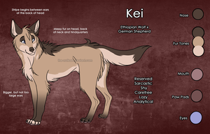 Kei Reference Sheet by The-Nutkase
