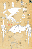 Tom as Dragon - reference by VixenDra