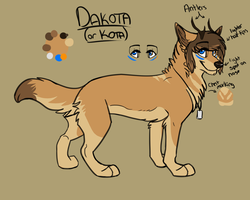 Dakota by iKodi