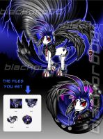 Black Wing Pony AUCTION/CLOSED by blackorb00