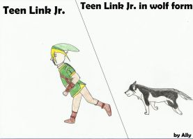 Teen Link Jr. by Cool-Ally