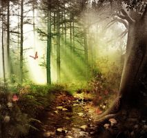 Forest by x6lili6th6x