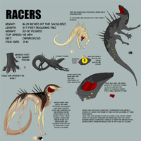 Racer Ref Sheet [OutDated] by Ophiuchae