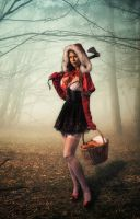 Little Red Riding Hood by vpotemkin