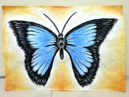 Blue Butterfly by SOS101