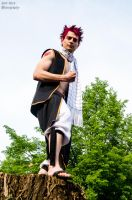 Fairy Tail - Natsu Dragneel Cosplay by pure-faces