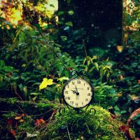 Stop all the clocks by RickHaigh