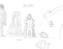 Mr.Crypto CS by SMS00