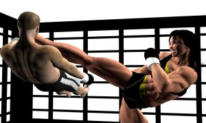MMA Beatdown 11 by Soldier2000