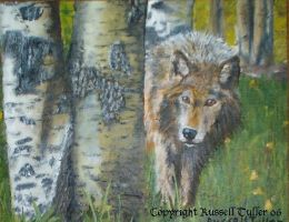 Wolf and Trees by RussellTuller