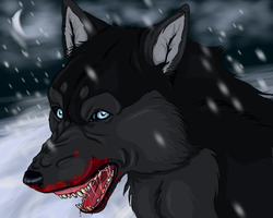 Killer Wolf by Dangeroushark