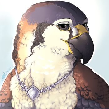 Commission: Peregrine by N6ndGryph