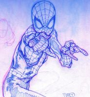 Spider-Man by timothygreenII