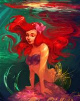 Ariel the little mermaid by MaxDaily