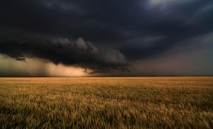 Shelf Cloud Near Nash. OK by MattGranzPhotography