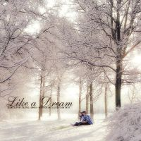 Like a dream by wondersmile