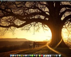 My Desktop by conga