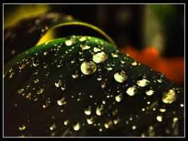 After Rainy day in Cracow by Zielzor